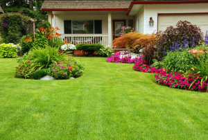 Using Curb Appeal to Make a Major Initial Impact
