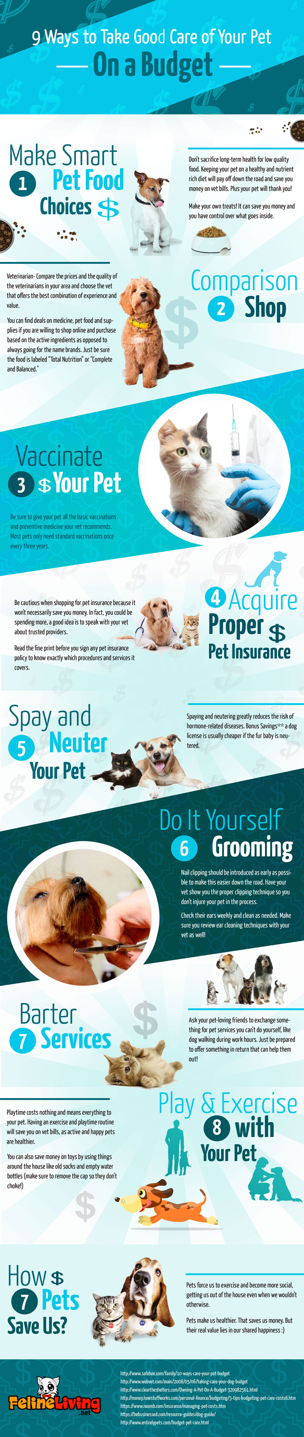 Pet Care on a Budget Infographic