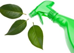 Green eco-friendly cleaner